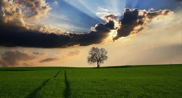 landscape_1509565946